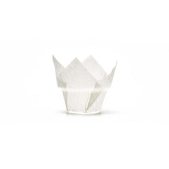 Novacart Russia Tulip Cup V9I60292RU